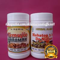 Obat Liver Herbal Obat Hepatitis Herbal Temujie Dan Habatop 3in1