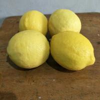 Lemon Import 4 buah