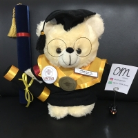 Boneka Wisuda Custom Teddy Bear Cream +-40cm with Kacamata & Tabung