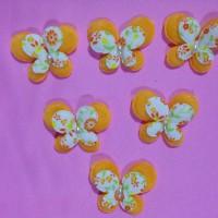 Aplikasi kupu2 spon (orange)