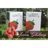 Katalog Jovem Gluberry Katalog.or.id