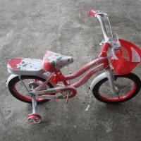 Sepeda Anak Mini 16 Evergreen Tebal dan Kokoh