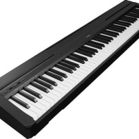 Digital Piano YAMAHA P45 P 45 ( Keyboard Only ) Sustain Pedal Inclued