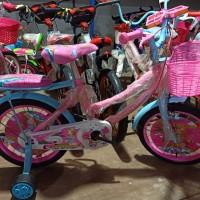 Sepeda Anak Mini 16 Centrum