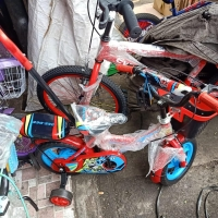 Sepeda Anak Dorongan Stir Deedee Eva 12