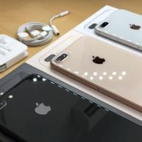 Iphone 8 plus 64GB Second Original Mulus Fulset asesoris Oem