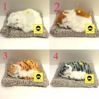 Arang Bambu Penghilang Bau Mobil Pajangan Kucing Cat Lucu Ukuran L