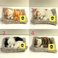 Arang Bambu Penghilang Bau Mobil Pajangan Kucing Cat Lucu Ukuran S