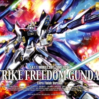 Gundam Bandai MG 1/100 Strike Freedom Extra Finish Version Original