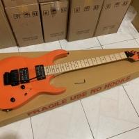 Gitar Ibanez Rg series updown new