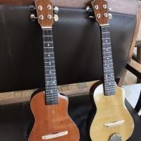 Gitar ukulele cak pickup / spull