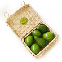 Avocadron Hampers - Handle Atas