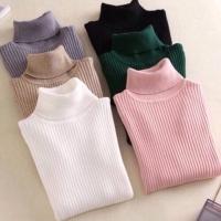 Meelis Sweater Kaos Turtleneck Rajut Wanita Shirt - 0614 ACQ
