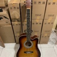 Gitar aksutik new pake trusoard sip