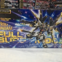 MG 1/100 Strike Freedom Gundam(Burst Mode)