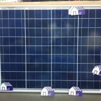 Promo solar panel surya cell module sun asia 50wp 50 wp 12v 12 v poly