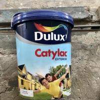 Cat Tembok Dulux Catylac Eksterior 5 Kg | Galon Warna