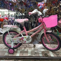 Sepeda Anak Mini 16 Evergreen Pinguin