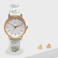Fossil watch authentic original gift set ES4383