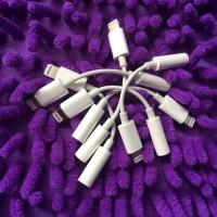 Converter Lightning iPhone Original Bawaan HP