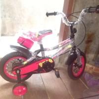Sepeda Anak BMX Evergreen 16 Series 1235 NEW