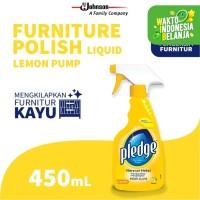 Pledge Liquid Pump 450mL