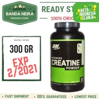 ON Optimum Nutrition Micronized Creatine Powder