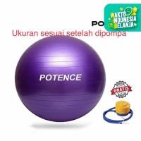 POTENCE GYMBALL ANTI BURST 75 cm / Gym ball / Bola Yoga / Gymball 75cm