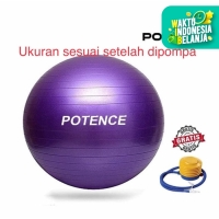 Gymball SPEEDS 75 cm / Gym ball / Bola Yoga / Gymball 75cm
