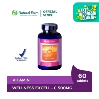 WELLNESS EXCELL-C 500MG