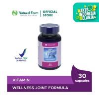 Wellness Joint Formula 30 Capsules