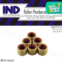 Roller-Roler-Loler-Loller 12 Gram-gr Vario 110 F1-eSP 2014/Beat FI-CBS
