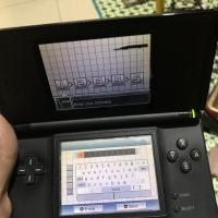 Nintendo ds lite layar garis