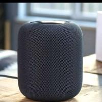 APPLE HomePod Smart Home Speaker Original - silver