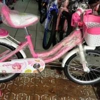 Sepeda Anak Mini Evergreen Daisy 18