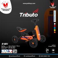 GOKART TRIBUTO TYPE G-101 (ORANGE)