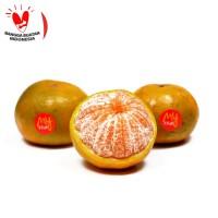 My Fruit Jeruk Medan 800 gr