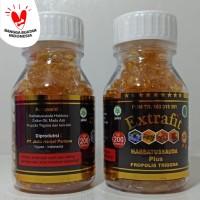 Minyak Habbatussauda oil PLus propolis Trigona Extravit isi 200 kapsul