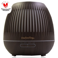 400ml Humidifier Essential Oil Diffuser Ultrasonic Model Terbaru