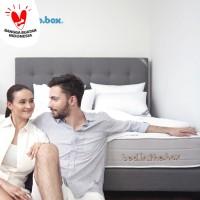 Bed inthebox Ukuran 160x200 Queen (Hanya Kasur)