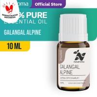 Alpinia Galangal Oil ( Minyak Lengkuas ) 10 ml | 100 % Pure & Natural
