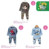 Baju Setelan Anak Laki-Laki Import Lengan Panjang 1-10 Tahun (1)