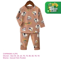 Baju Setelan Anak Laki-Laki Import Lengan Panjang Chipmunk A Shirton