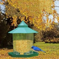 Waterproof Gazebo Hanging Feeding Wild Bird Feeder luar