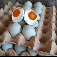 telur asin super - khas brebes isi merah