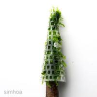 Jual Christmas Moss Murah Harga Terbaru 2021