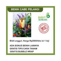 BIBIT CABE PELANGI BENIH CABAI RAINBOW Promo