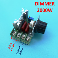 2000W Dimmer LED Lampu Heater Motor Speed Controller AC 220V 16A 2WK