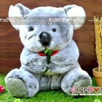 Boneka Lucu Koala Pita ( HK - 12 )
