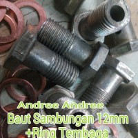 Baut Sambungan / Bolt Joint 12 mm + Ring Tembaga (10 set)